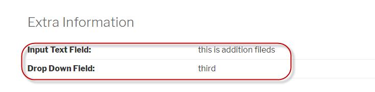 Input text field