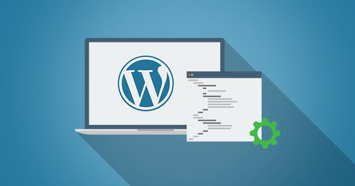 WordPress Theme Optimization