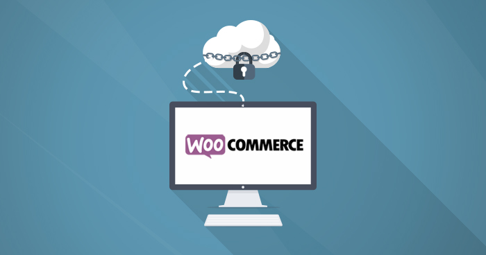 Back Up WooCommerce