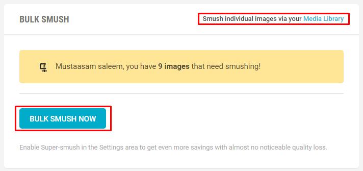 WPMU Dev WP Smush Pro Optimizing Images