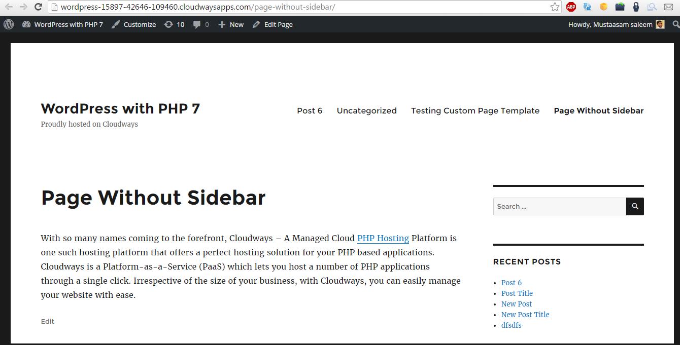 WordPress Default Theme