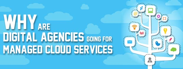 Digital Agencies and Managed Cloud Services
