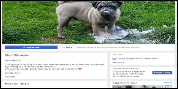 FB community