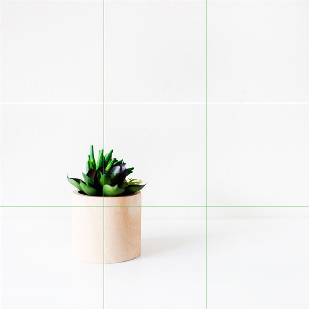 Placing Your Product - Instagram Tips