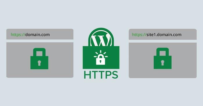 Add SSL on WordPress Multisite