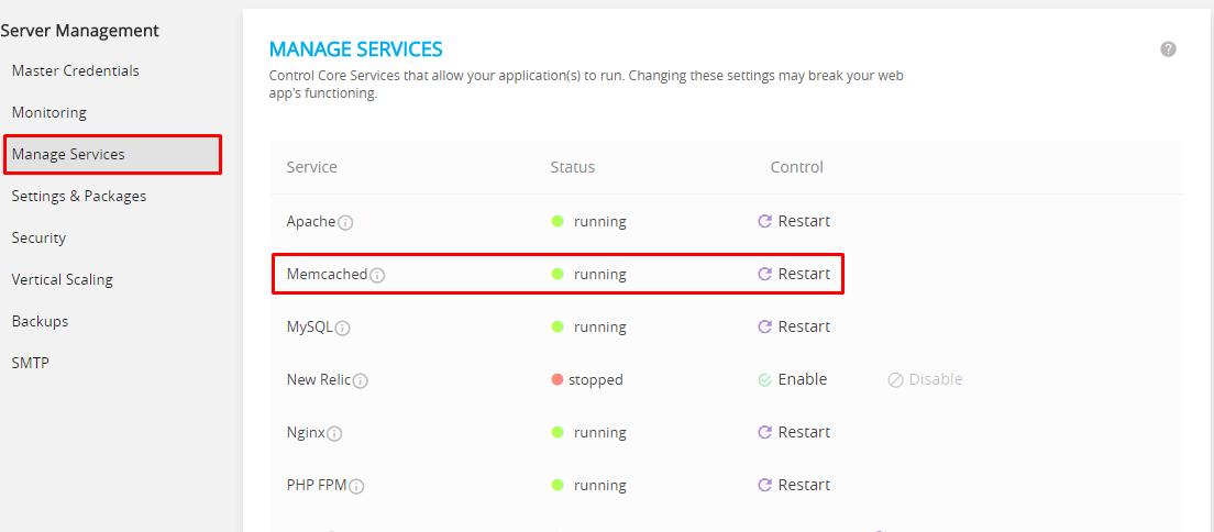 cloudways services status