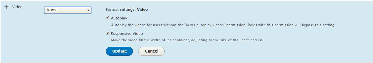 article video field settings