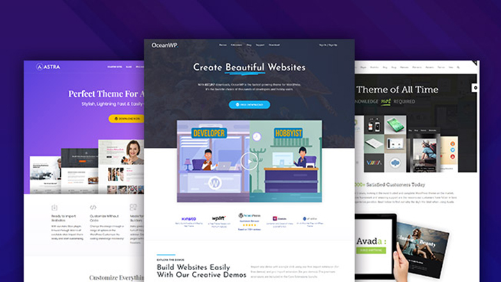 Select Well-Optimized WP Theme