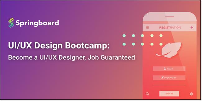 Springboard startup