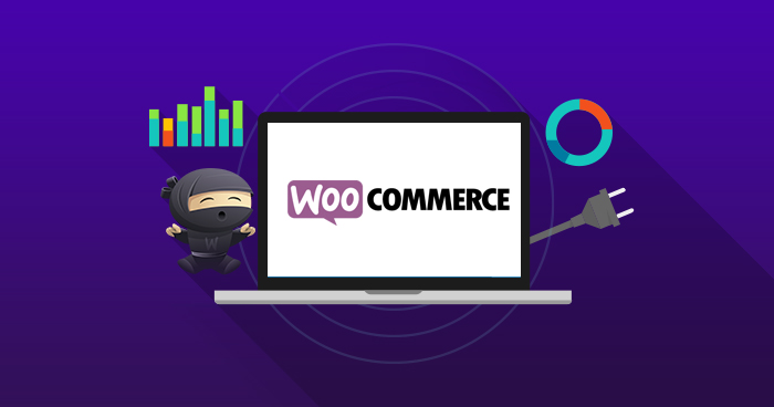 Top WooCommerce SEO Plugins