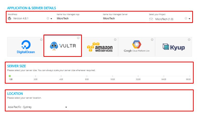 Vultr Application and Server Details
