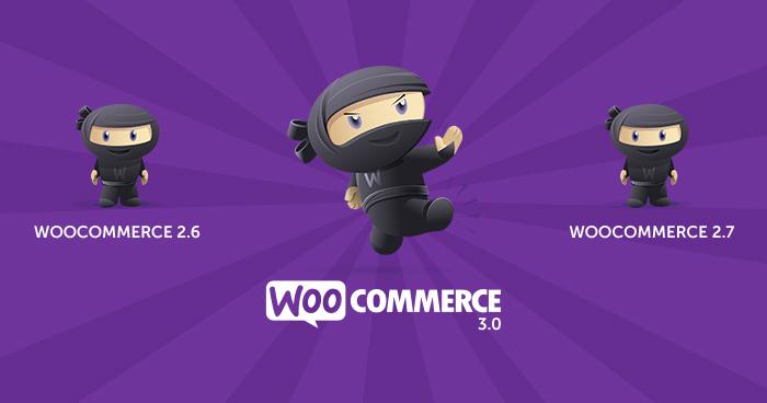 WooCommerce update