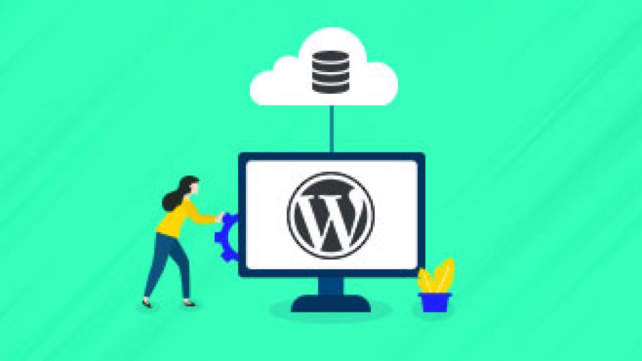 Download wordpress backup and clone master How to duplicate