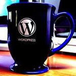 WordPress Brisbane Meetup
