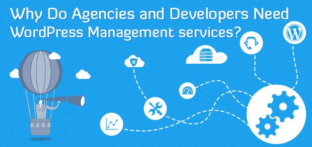 Wordpress management for developer
