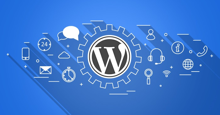 WordPress Support & Maintenance Providers