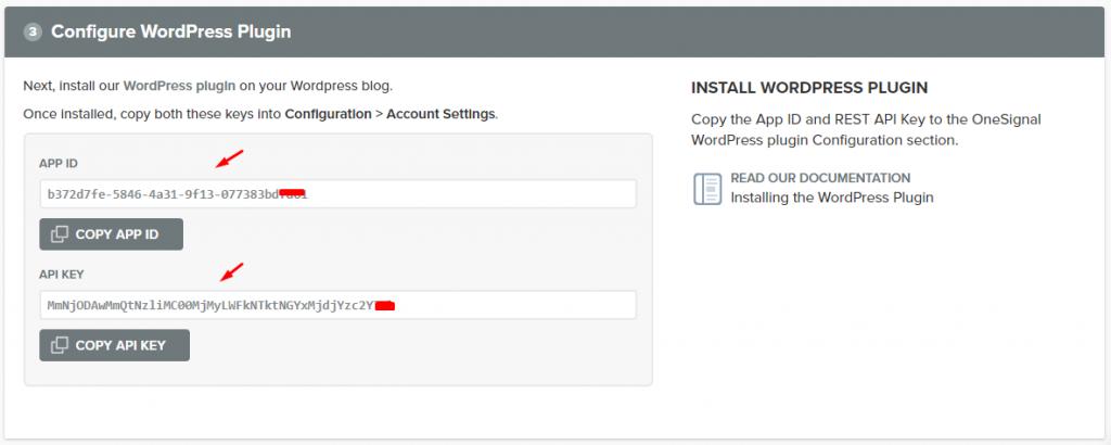 configure wordpress pugin