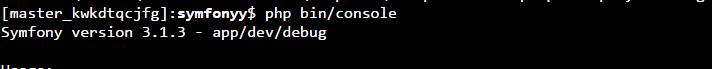 symfony bin/console command