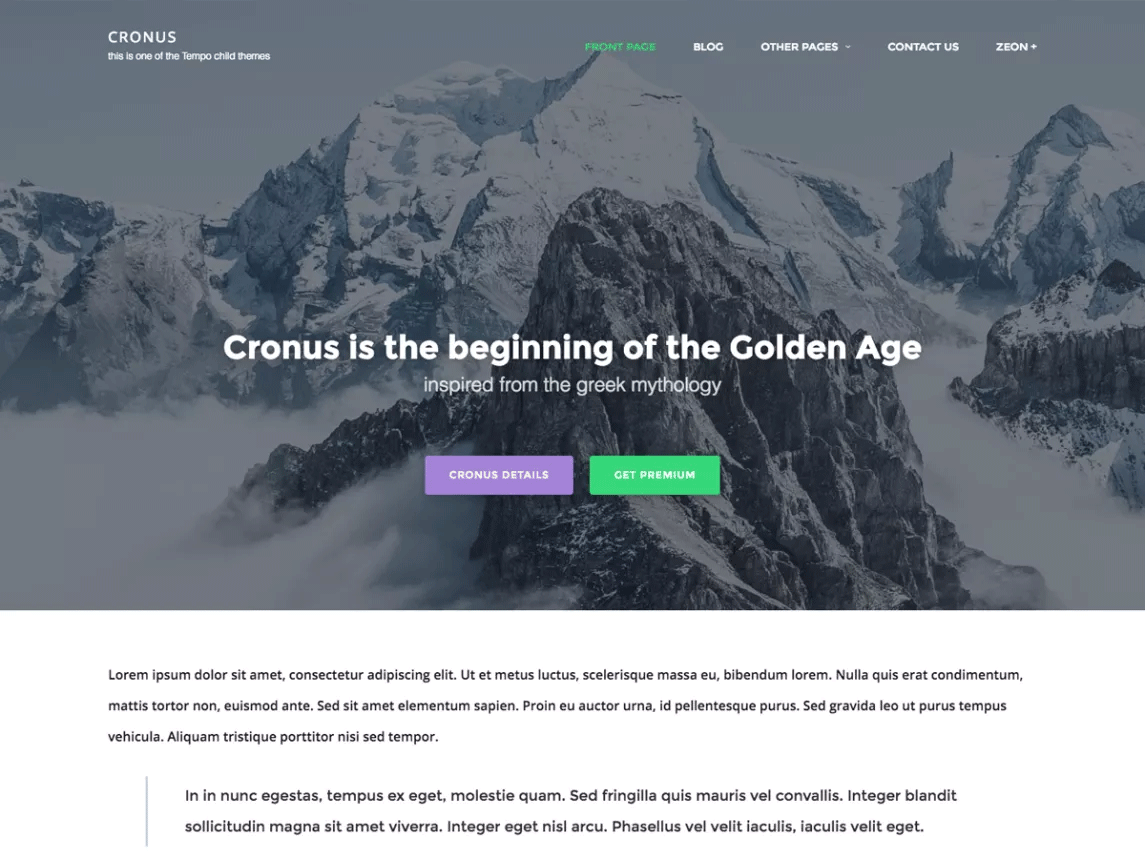 small business WordPress theme cronus