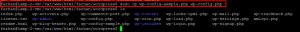 copy config file