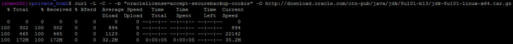 installing jdk on linux
