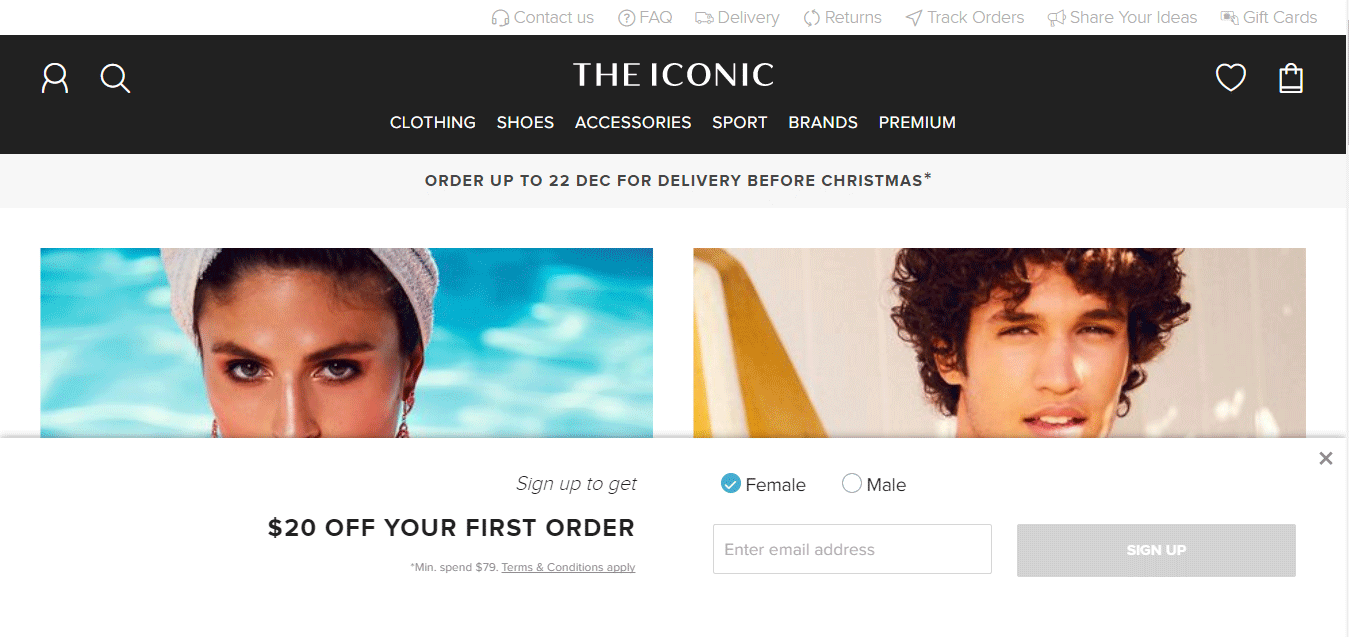 Top Ecommerce Site - The Iconic