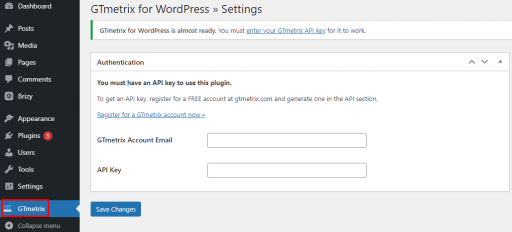 GTmetrix WordPress settings