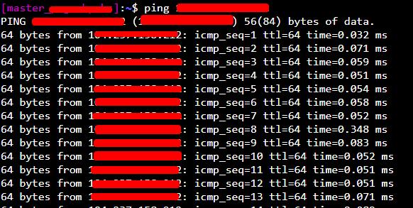 manual server ping test