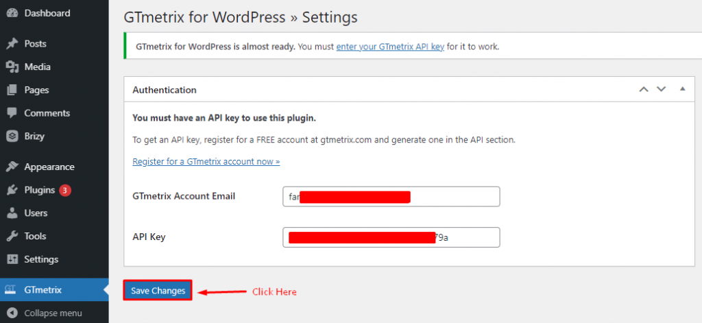 GTmetrix for WordPress settings