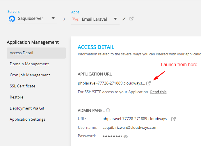 Send email in Laravel through email sending services