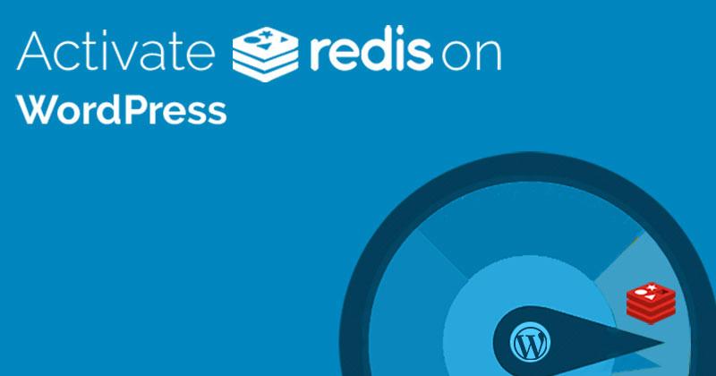 wordpress redis cache