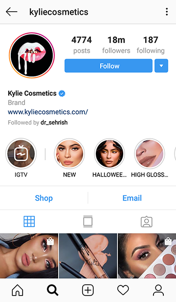 kylie cosmetics profile