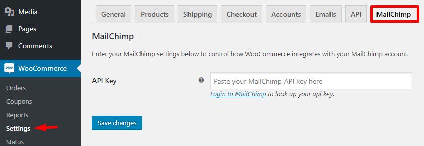 mailchimp plugin settings