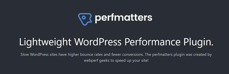 perfmatters plugin