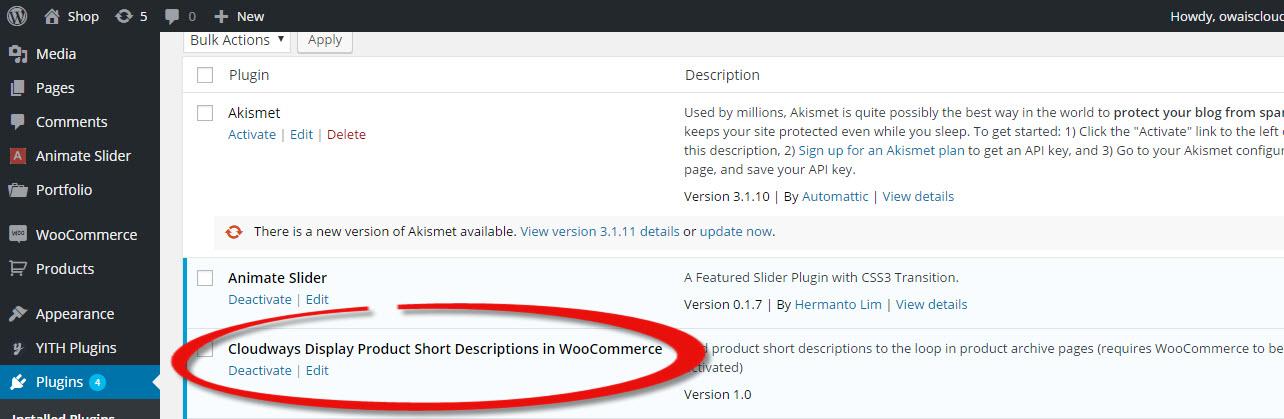 wordpress plugin setting
