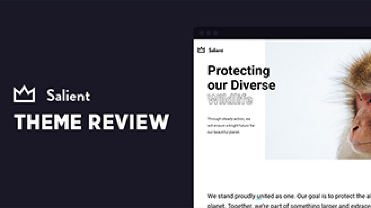 Salient Wordpress Theme Review Here S Why You Should Use It
