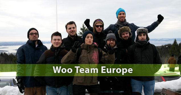wootheme team