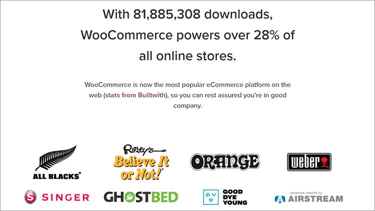 woocommerce statistics