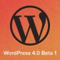 WordPress 4.0 Beta 1 Thumb
