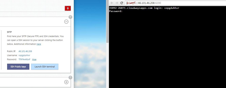 Cloudways Console