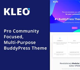 kleo wordpress theme